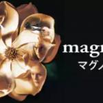 動画「マグノリア」無料視聴 トム・クルーズ映画